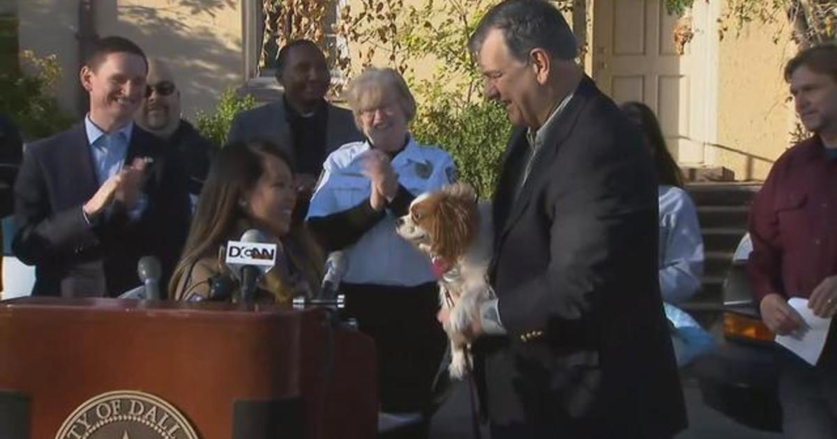 Ebola-free nurse reunites with dog