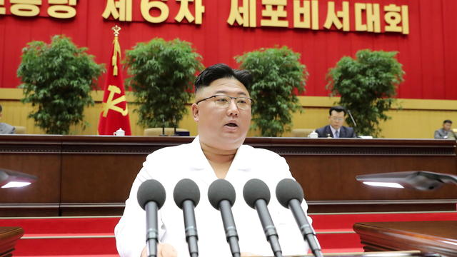 KCNA picture of North Korean leader Kim Jong Un addressing a conference of the Workers' Party's cell secretaries in Pyongyang