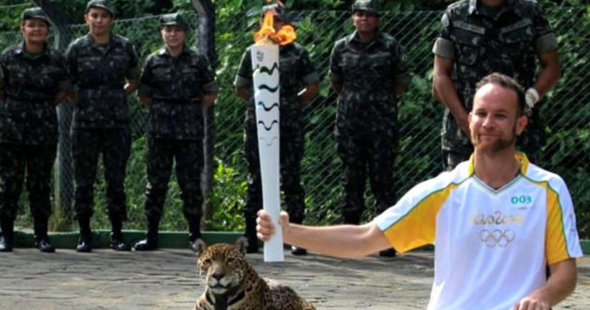 Jaguar killed at Olympic torch event