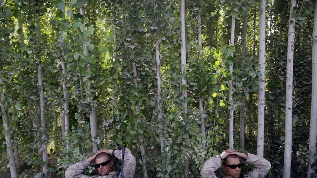 Afghanistan 20 Years Photo Gallery