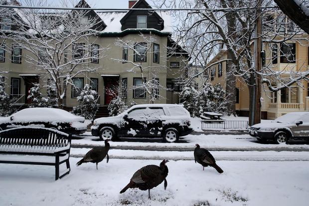 Cambridge, Massachusetts