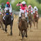 146th Preakness Stakes