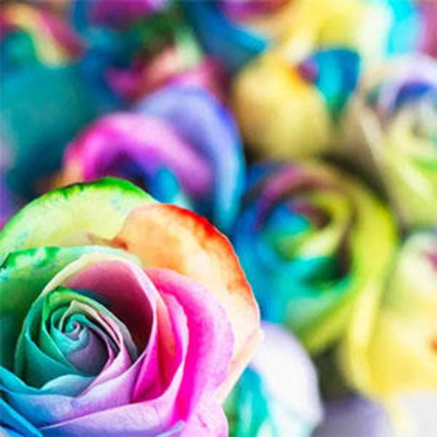 cbsnews-fathers-day-pride-bouquet.jpg