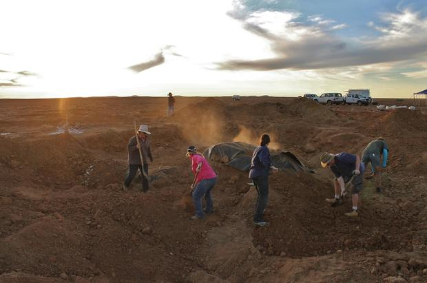 digging-for-dinosaurs-2015-crochellelawrence-6.jpg