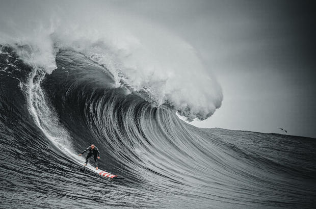 """Available July 18 on HBO Max: """"100 Foot Wave"""" Series Premiere"""
