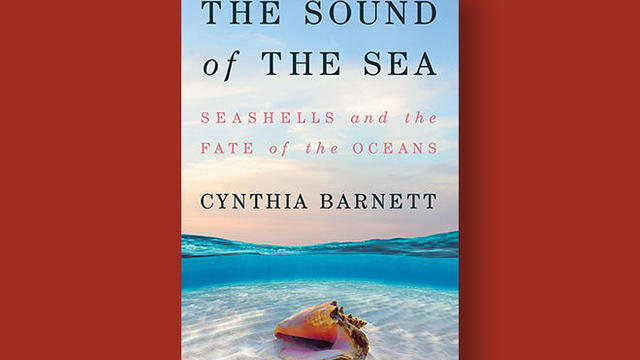 sound-of-the-sea-cover-ww-norton-660.jpg