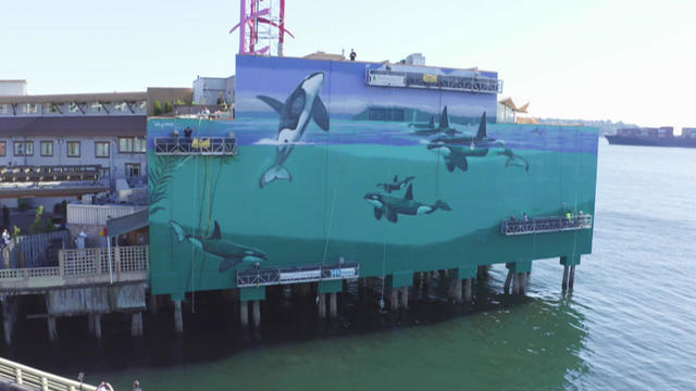 wyland-whaling-wall-764258-640x360.jpg