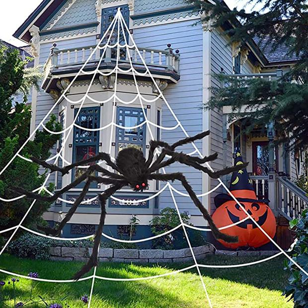 spiderthing.jpg
