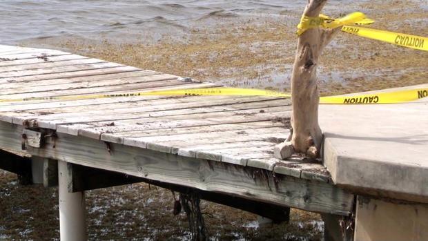 Jasmine Hartin case: What happened on the pier?