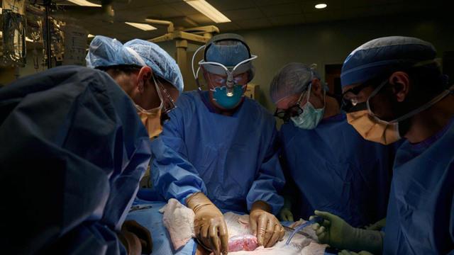 1021-ctm-transplantbreakthrough-lapook-819776-640x360.jpg